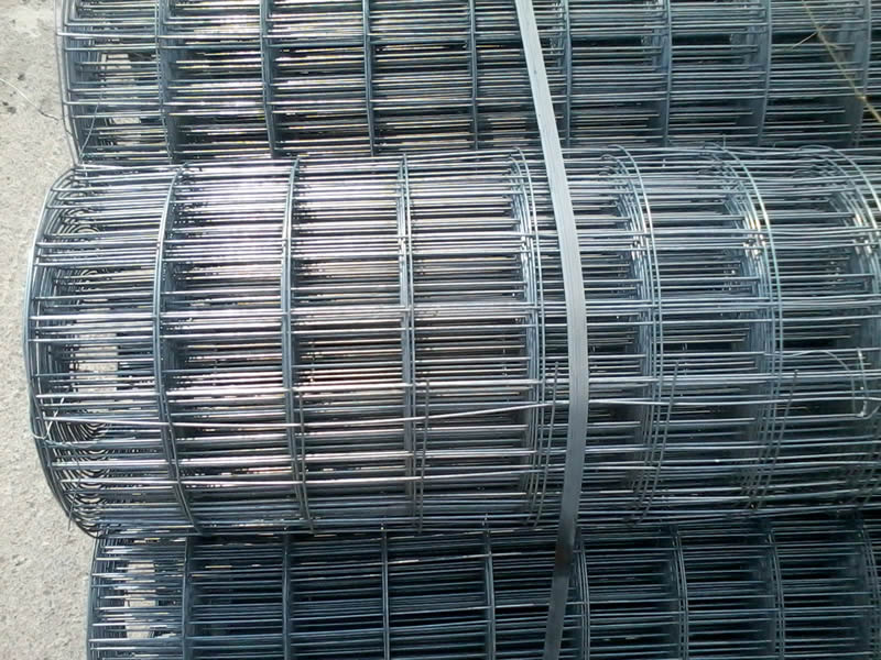 Welded Wire Mesh For Garden Mall Fence And Hog Traps