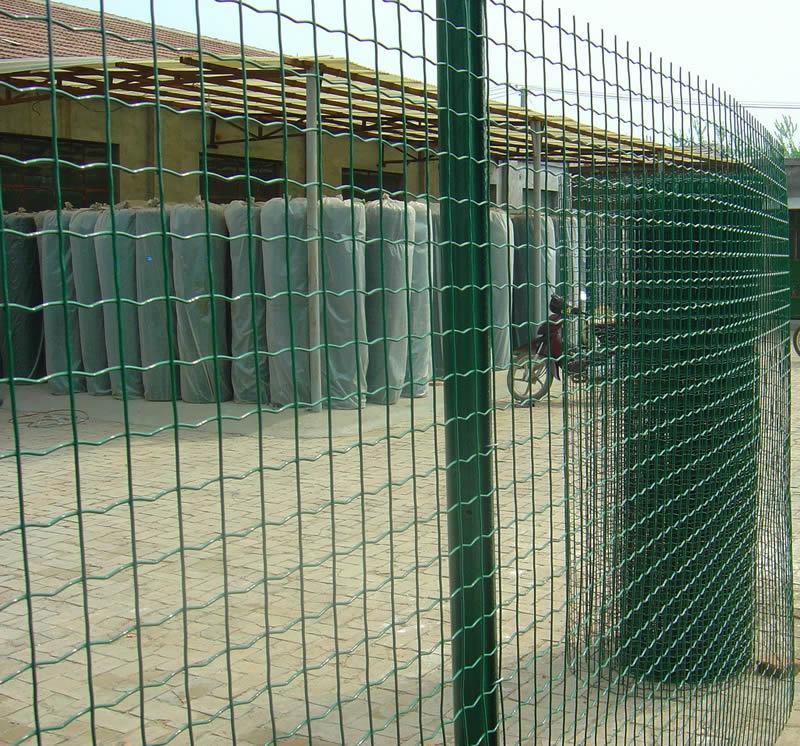 Welded wire fence and hot dipped galvanized
